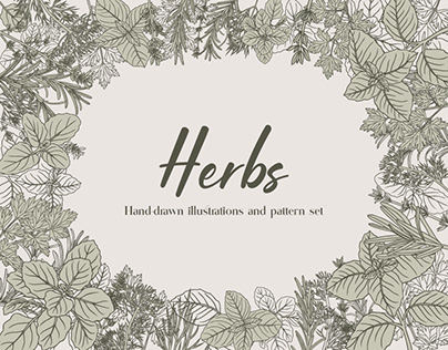 Herbs illustrations and pattern set