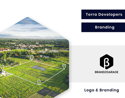 Terra Developers - Logo & Branding