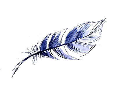 Just feathers
