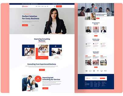 Business Consultant Landing Page Web design