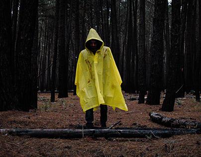 Forest - Teaser