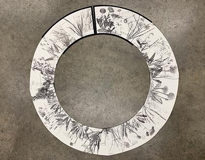 Horologium Florae