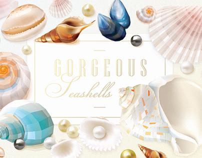 Gorgeous Seashells