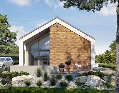 Modern single-family house 10