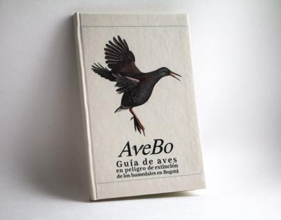 AveBo - Kit de reconocimiento de aves (EN)