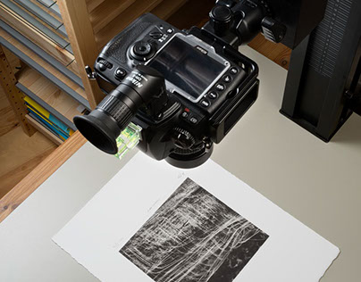 Reproduction of flat paper prints preserving texture