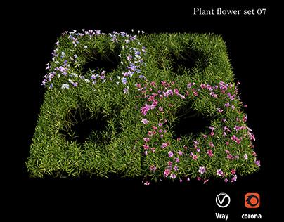 Plant flower set 07