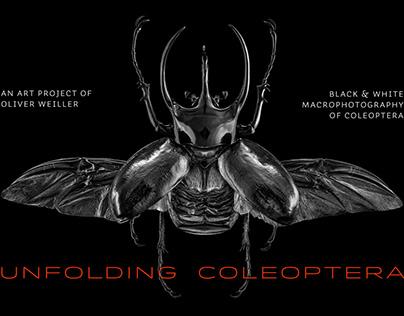 Unfolding Coleoptera
