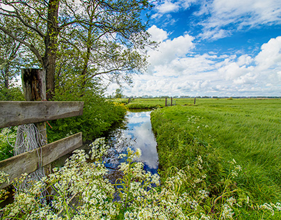 Lente in Noord-Holland