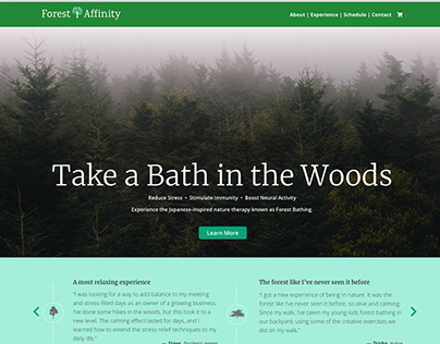 A Forest Bath for You
