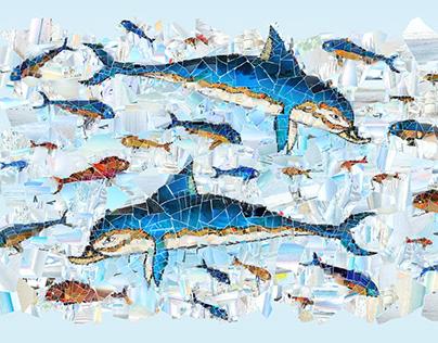 Healthy Dolphins - Healthy Seas