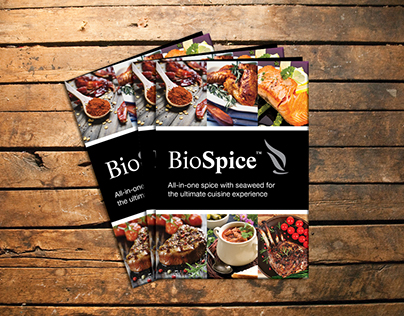 BioSpice Booklet