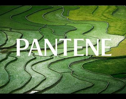 Pantene - Product Story