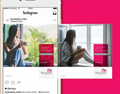 Website Design & Development. SMM & SEO