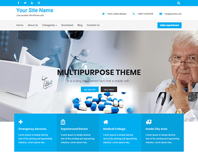 Customize WordPress Responsive Website