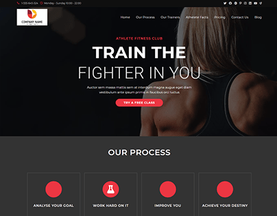 Customize Responsive WordPress Website