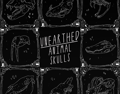 Unearthed: Animal Skulls