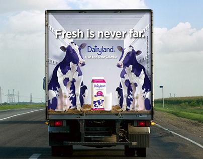 Dairyland Milk
