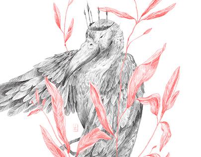 Bird'19