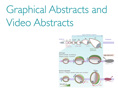 Graphical Abstracts