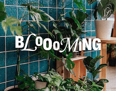 Bloooming | Gardening Shop