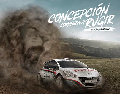 Rally Peugeot - Retoque Digital