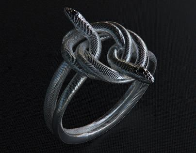 Serpents Embrace