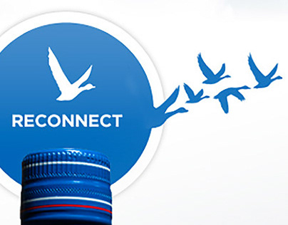 Grey Goose Summer Connections