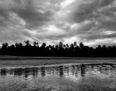 Landscapes - Land - Alagoas