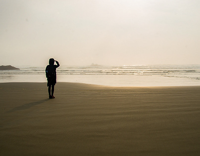 Pacific Rim X Mist