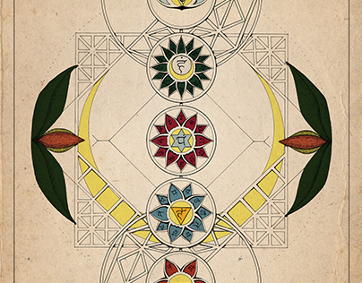 Chakras Illustration