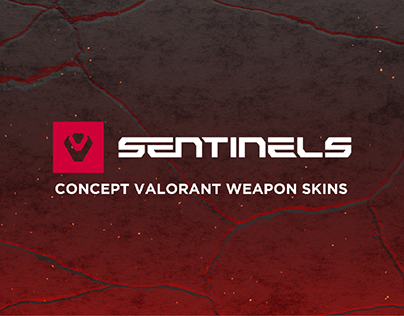 Concept Valorant Weapon Skins