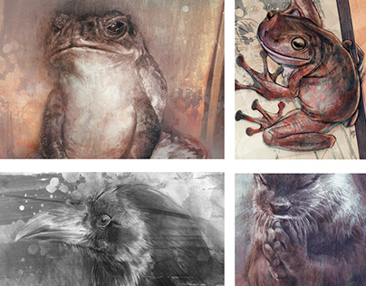 Animals (personal works, 2016-2019)