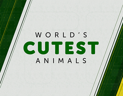 Worlds Cutest and Dangerous Animals