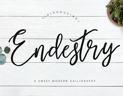 ENDESTRY CALLIGRAPHY - FREE MODERN FONT