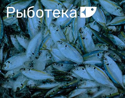 Ryboteka Fish Shop Logo Design