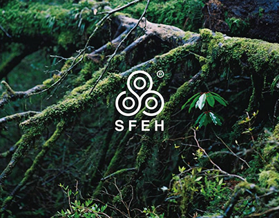 S.F.E.H VI DESIGN-澳門食物環境健康學會