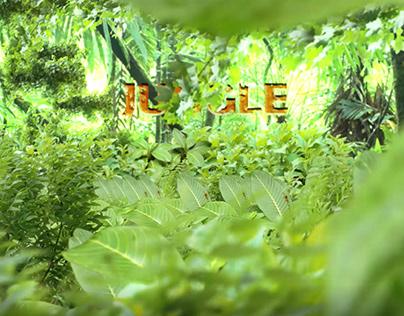 Jungle - Camera