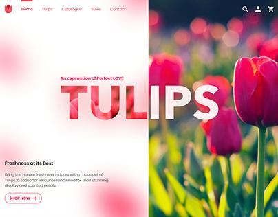Buy Fresh Tulips with Us!