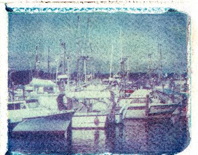 Polaroid Wet Transfers II