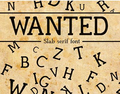 Wanted Slab Serif