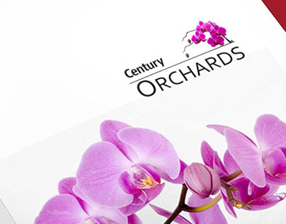 Century Orchards - Brochure & Ads