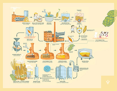 Info graphic about the production of delicious beer
