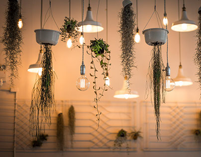 Healthy Light Bulbs for home and office lighting
