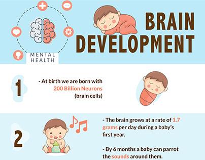 Children Brain Development stages