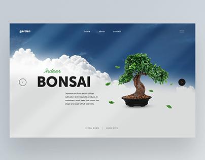 Bonsai web design