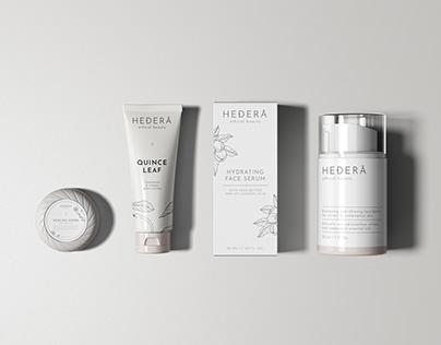 Hedera   Illustrations & Labels