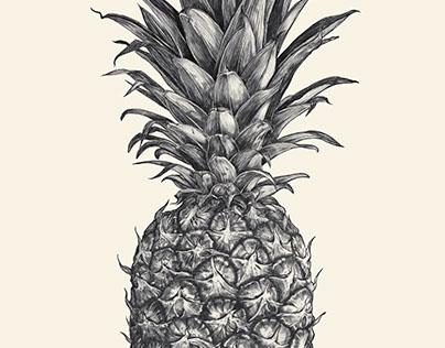 Pineapple 2015