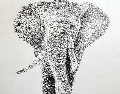 Elephant Stippling