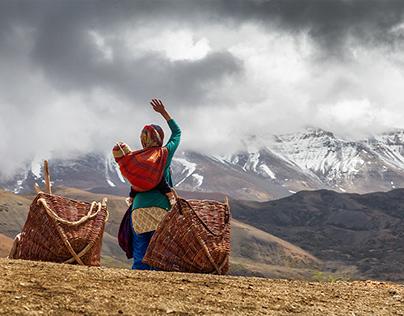 Inde Himachal Pradesh